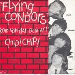 Flying Condors 2